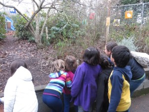 Jimena finds birds with students