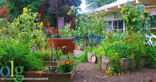 Outdoor Learning Gardens Olg Soil Hand